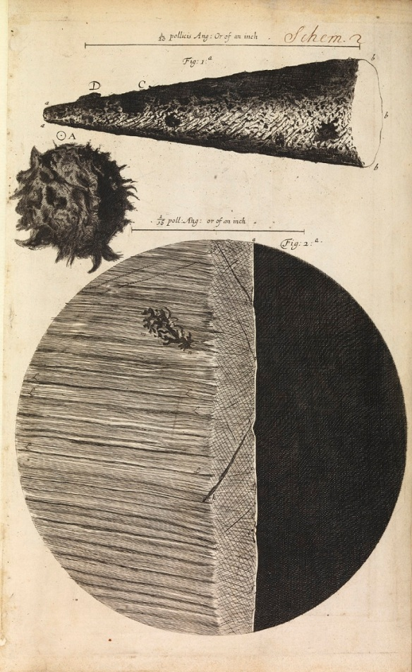 Magnified needle-tip, printed full-stop and razor's edge from Hooke's Micrographia (London, 1665).