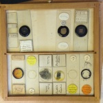 Selection of antique microscope slides